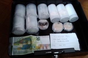 Silbermünzen zur Krisenvorsorge.